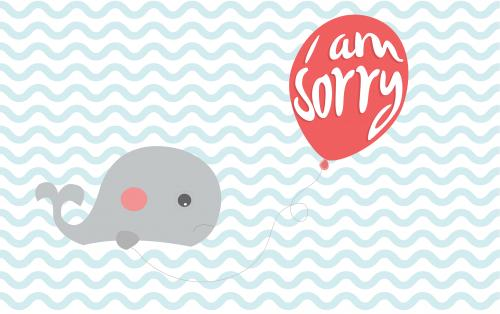 Sorry Whale